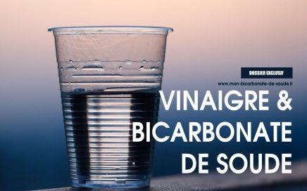 bicarbonate vinaigre
